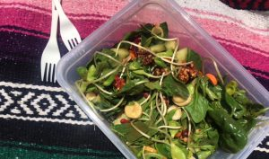 sunfower sprout salad