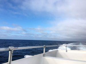Catalina ferry ride