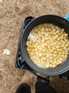 Garbanzo beans being boiled at camp